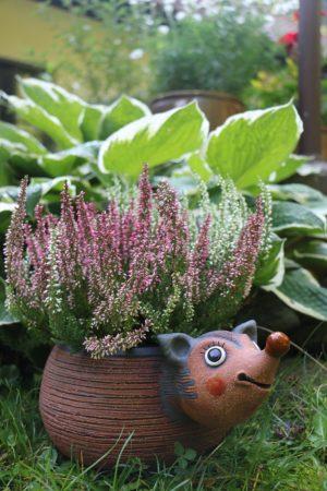 Ježek – květináč (v 13 cm, d 30 cm, bez kytky)
